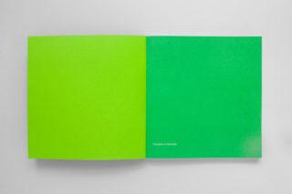 GreenItaly.-IQdS-02-Annual-report-Pantone-green