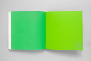 GreenItaly.-IQdS-17-Annual-report-Pantone-green