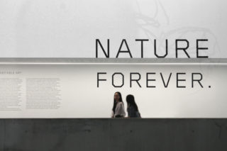 MAXXI-Nature-Forever.-Piero-Gilardi-01-Exhibition-Title-Text-Typography
