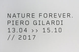 MAXXI-Nature-Forever.-Piero-Gilardi-03-Exhibition-Title-Date-Typography