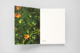 MAXXI-Nature-Forever.-Piero-Gilardi-Book-Catalogue-02-Frontispiece