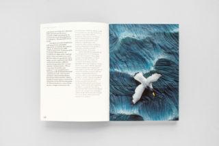 MAXXI-Nature-Forever.-Piero-Gilardi-Book-Catalogue-07-Chapter-Image