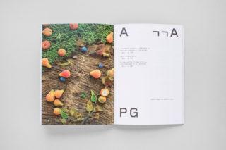MAXXI-Nature-Forever.-Piero-Gilardi-Book-Catalogue-26-Chapter-Code-Number-Anthology