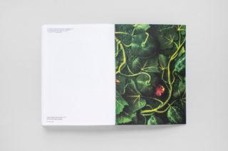 MAXXI-Nature-Forever.-Piero-Gilardi-Book-Catalogue-31-Back-cover