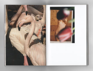 08-ESS-Dario-Salamone-Photography-Book-design
